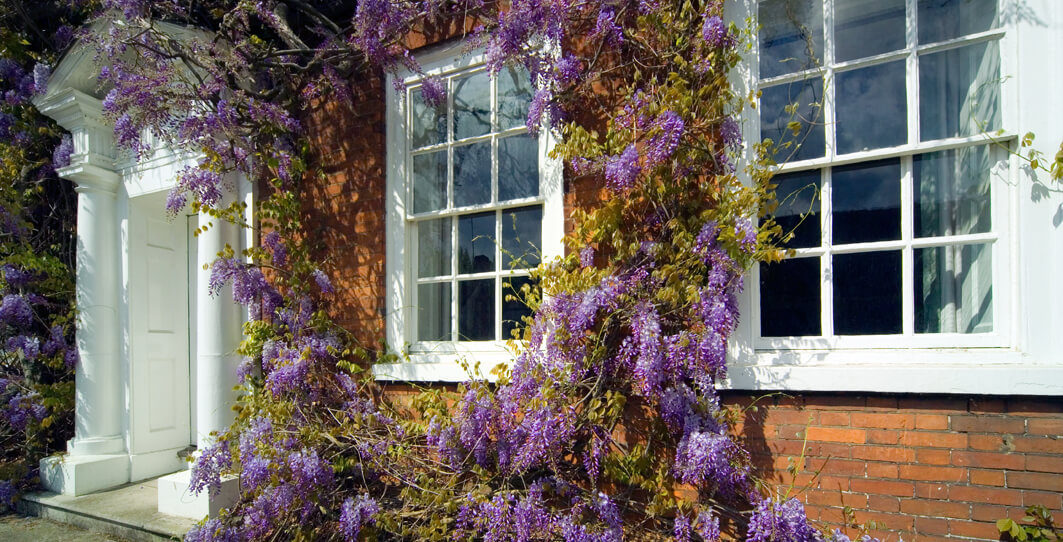how much do sash windows cost by timber window and door solutions